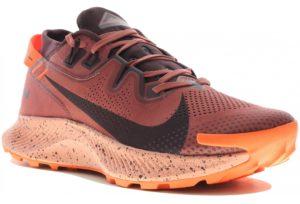 chaussure Nike Pegasus Trail 2